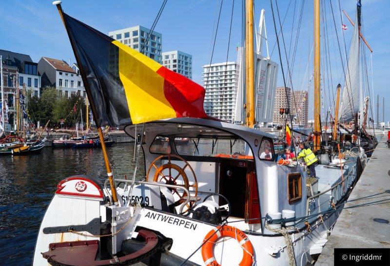 Water-rAnt Antwerp