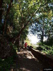 Pena Palace Sintra gardens