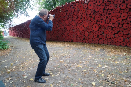 Tervuren poppy installation